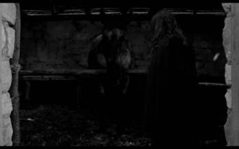 The Turin Horse - the horse