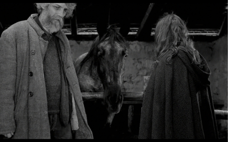 The Turin Horse (2:14:12). Directed by Béla Tarr. Copyright TT Filmmûhely.