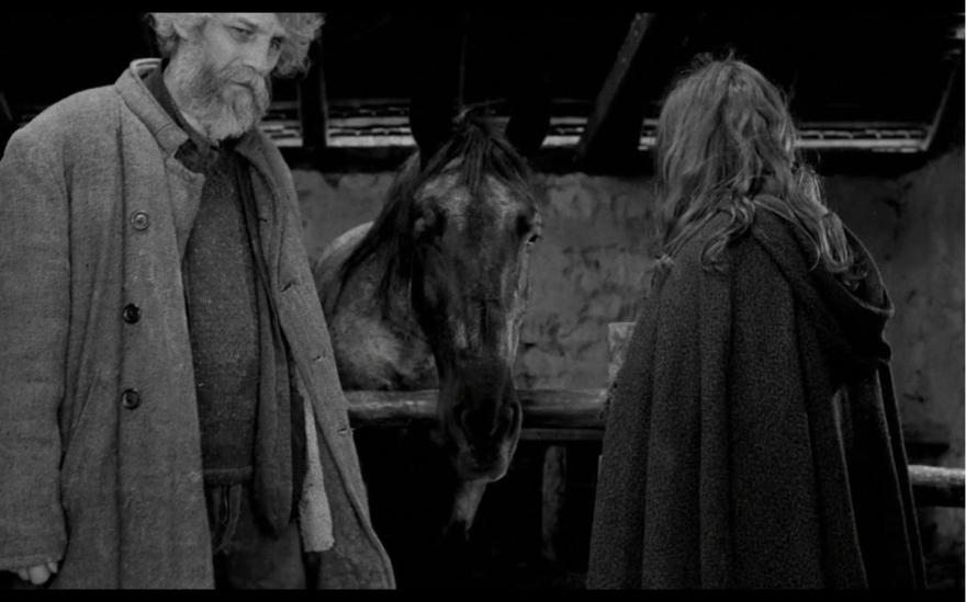The Turin Horse (2:14:12). Directed by Béla Tarr. Copyright TT Filmmûhely.